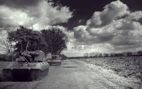 танки, арт, облака, черно белая, гв-е, Германия, арта, артиллерия, САУ