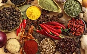 специи, приправы, красный перец, чёрный перец, перец, бадьян, лук, имбирь, чеснок, грецкие орехи, лавровый лист