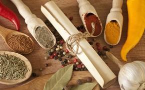 roll, seasoning, spices, spoon, paprika, black pepper, garlic
