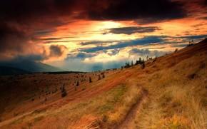 Naturaleza, Hills, hierba, Los rboles, las nubes