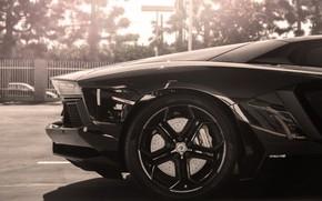 ламборгини, авентадор, черный, колесо, диск, солнце, Lamborghini