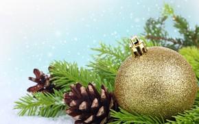 palla, palla, oro, Coni, ramo, abete, Capodanno, Natale, Capodanno