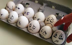 яйца, коробка, эмоции, страх, слезы, рука
