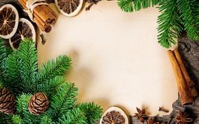 Tree, branch, cinnamon, star anise, carnation, lemon