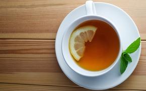 saucer, cup, mint, tea, drink, lemon