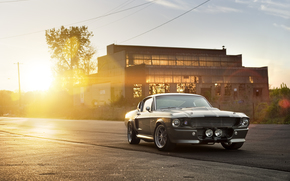 ford, Shelby, muscle car, silver, building, sun, highlight, ford