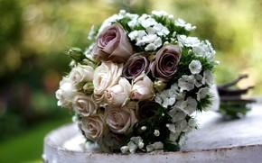 гвоздика, розы, цветы, букет, композиция
