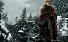 guerriero, Montagne, neve