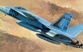 hornet, carrier-based fighter-bomber, Marines, picture