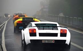 Lamborghini, Gaillarde, murselago, Diablo, white, yellow, orange, black, rain, highway, fog, Lamborghini
