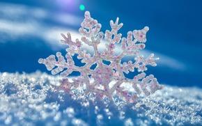 snowflake, snow, vkrapinki