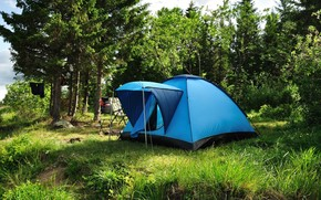 tourism, tent, greens, meadow