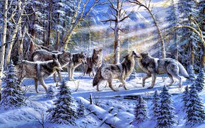painting, forest, Winter, Wolves, flock, sun, spruce, Trees, nature, animals