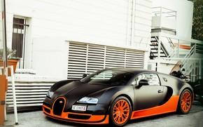 бугатти, вейрон, суперспорт, черный. оранжевый, суперкар, дом, Bugatti