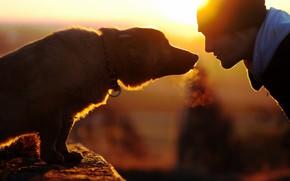 uomo, cane, stato d'animo