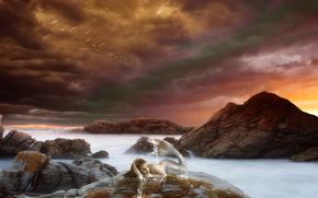 mermaid, русалка, девушка, хвост, лежит, море, океан, скалы, небо, тучи, птицы