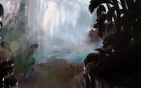 pioggia, foresta, luce, gocce