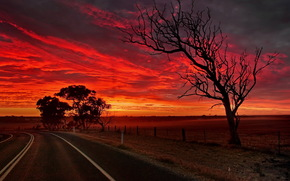 australia, south australia, strathalbyn, road, night
