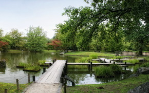 Gardens, Belgium, pond, japanese hasselt, nature