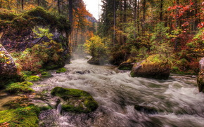 river, stones, forest, austria, moss, hdr