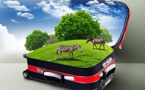 чемодан, облака, кусты, зебры, трава, креатив