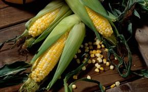 milho, verduras, madeira, andar