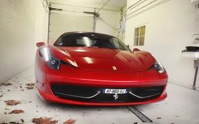 Ferrari, Italia, rosso, anteriore, fari, fogliame, Ferrari