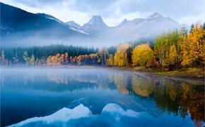 Mountain Lake, autunno, foresta, vertici, superficie liscia, riflessione, natura