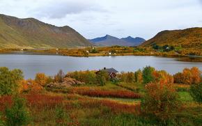 Пейзаж, Норвегия, Горы, Озеро, steirapollen, Трава