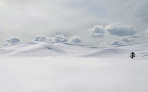 snow, tree, drifts, cold, Winter, clouds