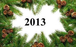 nuovo, anno, ramo, Coni, Capodanno