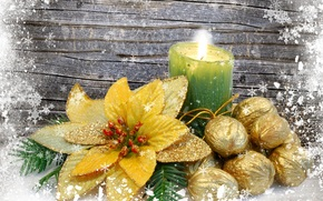 candle, nuts, flower, gilding, Snowflakes