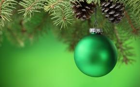 palla, palla, verde, Coni, ramo, abete, abete rosso, Giocattoli, Natale, Capodanno, Natale, Capodanno
