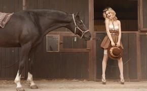nia, rubia, caballo, caballo, sombrero, Medias
