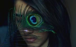 stato d'animo, ragazza, brunetta, faccia. penna, piumaggio, blu, fatto arrabbiare, pavone, sfondo, carta da parati
