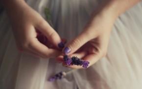 Flowers, girl, hand. florets. purple, blue, background, wallpaper