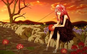 пруд, кувшинки, девушка, лотос, арт, цветы, вода, дерево, камни, клубок, нить
