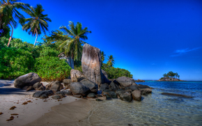 nature, Island, paradise island, coast, stones, Palms