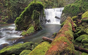 waterfall, river, stones, forest, log, moss