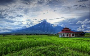 Fuji, mountain, grass, field, home, construction, clouds