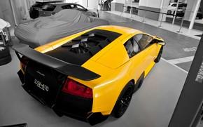 ламборгини, мурселаго, желтый, суперкар, Lamborghini