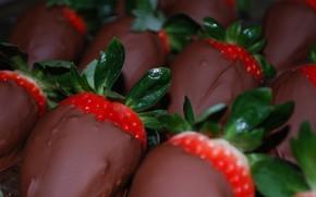 strawberry, chocolate, food, sweet, dessert