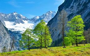 Mountains, Austria, landscape, tyrol, Trees, nature
