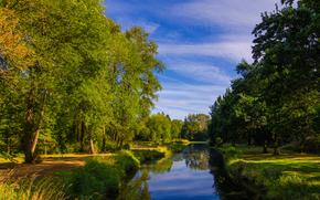 alberi, verdura, fiume, piccolo fiume, canale, traccia, tramonto