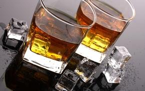 whisky, ghiaccio, cubi, gocce, tavolo, bere, calici, Pagaia, alcool
