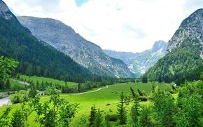 Austria, Tirol, Austria, Tirol, paisaje, Gra, rkchka, Los rboles, de los bosques.