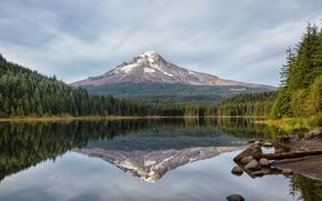 trillium lake, oregon, озеро, гора, отражение, лес