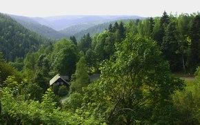 summer, Mountains, forest, Czech Republic, Bohemia, narodni park