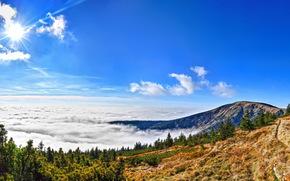 Giant Mountains National Park, Czech Republic, Mountains, forest, clouds, sun