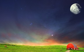 night, field, steppe